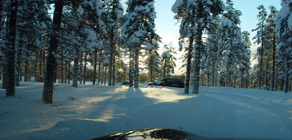 arctic-trail