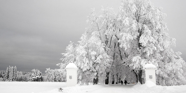 winter in the baltics
