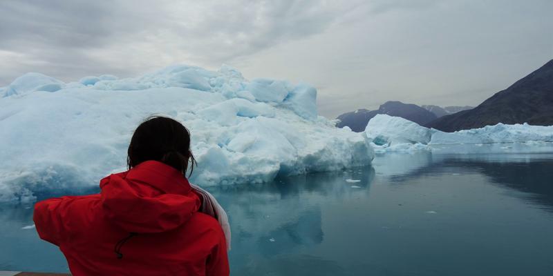 17 - Qooroq ice fjord