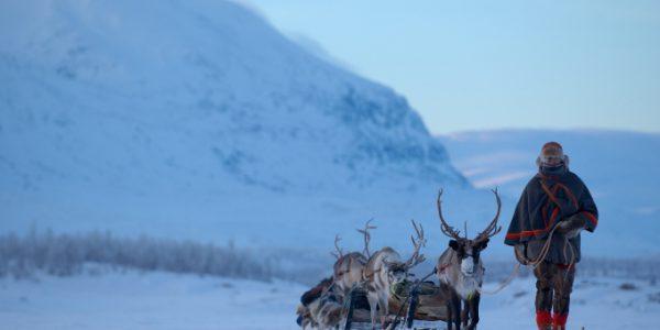 staffan widstrand sami lapland 1306