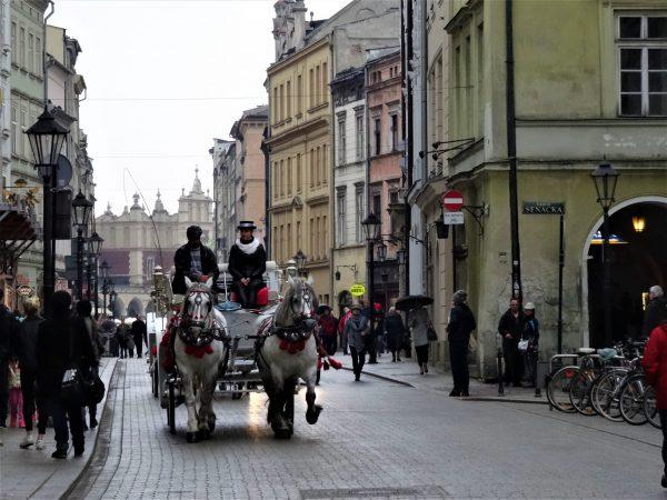 Krakow Old Town horses