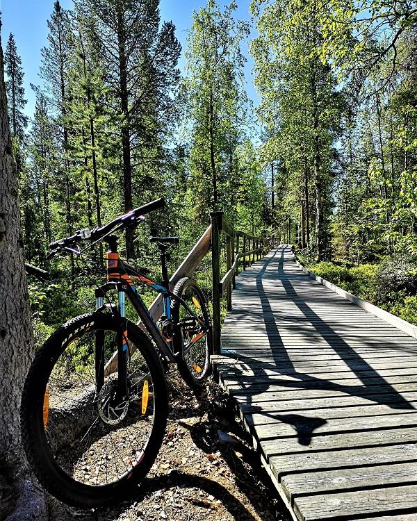 Mountain biking in Sweden