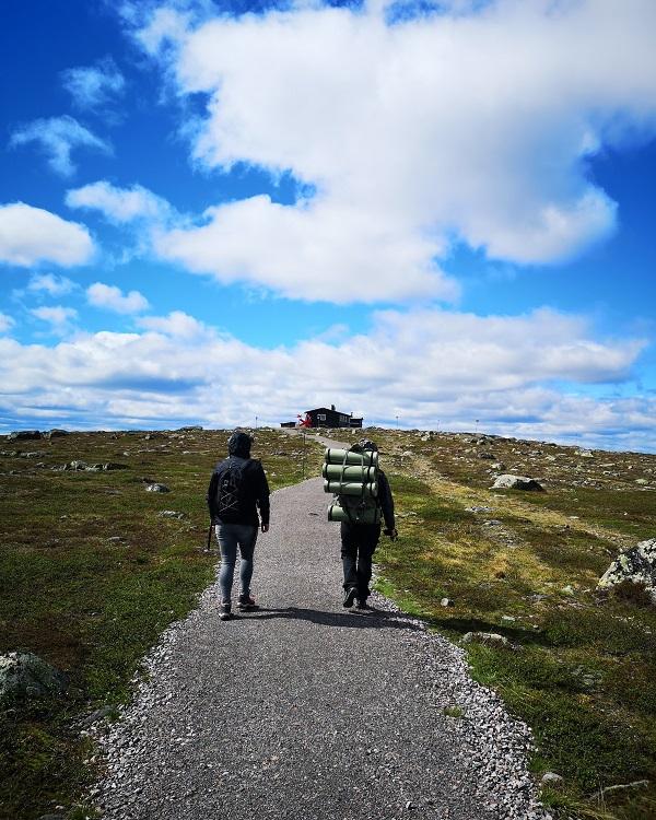 Nature Walk in Swedish Lapland